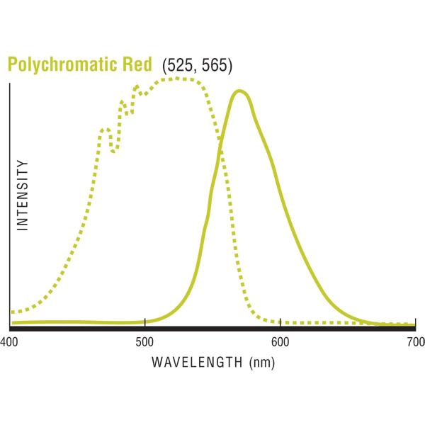 Polychromatic (PC) Red発光/励起波長グラフ