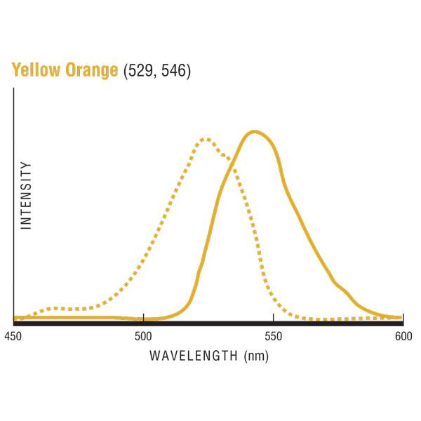 Yellow Orange (YO) 発光/励起波長グラフ