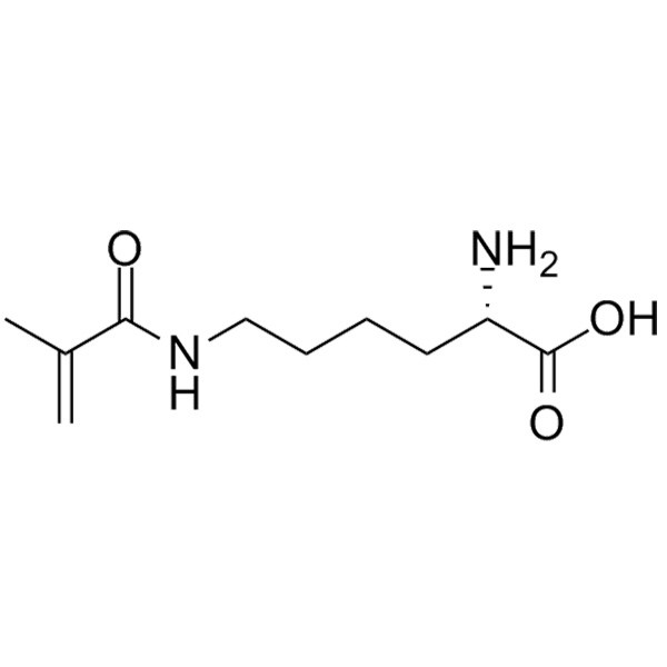 Methacryloyl-L-Lysine