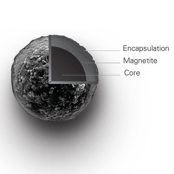 Magnefy™ COOH