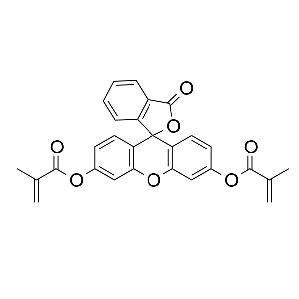 Fluorescein dimethacrylate