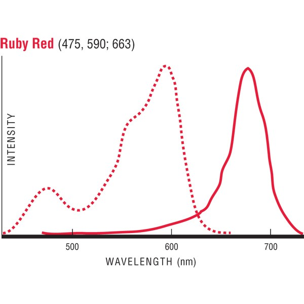 Flow Check™ Ruby Red Fluorescent Microspheres