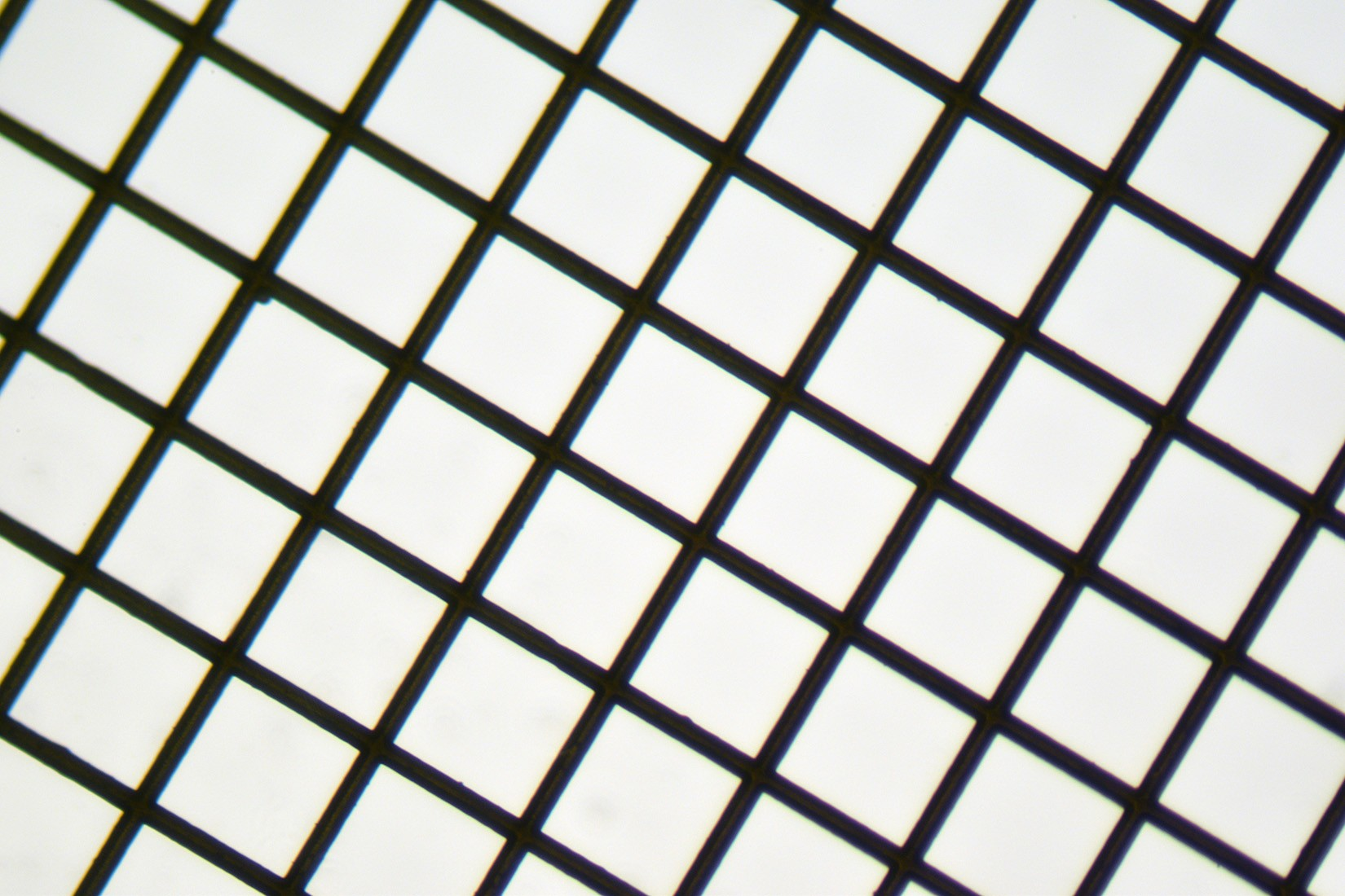 Copper 200 mesh Grids Square