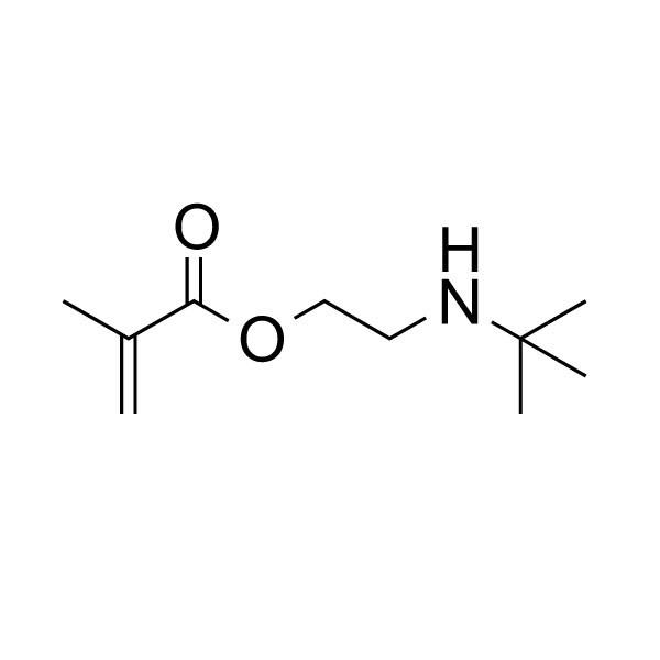 2-(tert-Butylamino)ethyl methacrylate, min. 90%