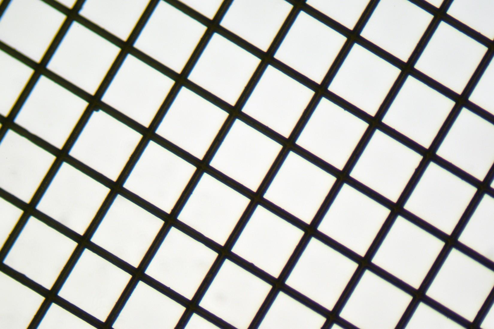 Copper 200 mesh Grids Square