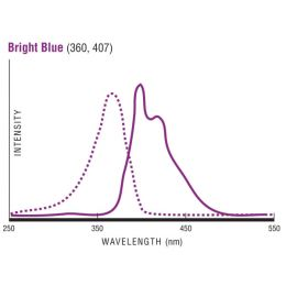 Flow Check™  High Intensity Alignment Grade Particles - 0.50µm (BB)