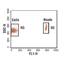 Flow Cytometry Absolute Count Standard™ (20 tests)